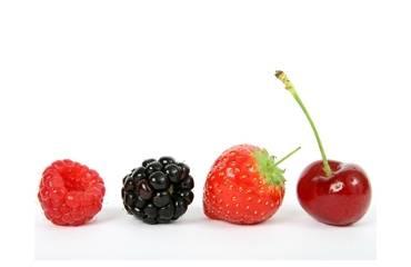Fruit Flavours